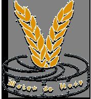 Voogd Meelhandel BV